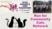 Run for the Cats at The Echo Women's Mini-Marathon