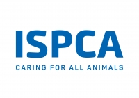 ISPCA - Irish Society for the Prevention of Cruelty to Animals