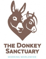 The Donkey Sanctuary (Ireland ) Ltd