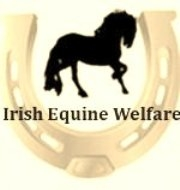 Irish Equine Welfare