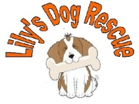 Lily\'s Dog Rescue