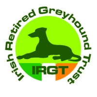 Retired Greyhound Trust Programme