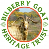 Bilberry Goat Heritage Trust