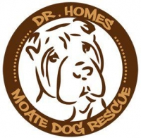 Moate and Midland\'s Dog Rescue