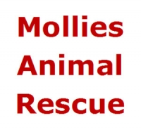 Mollies Animal Rescue